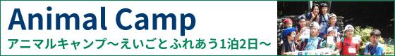 アニマルキャンプ